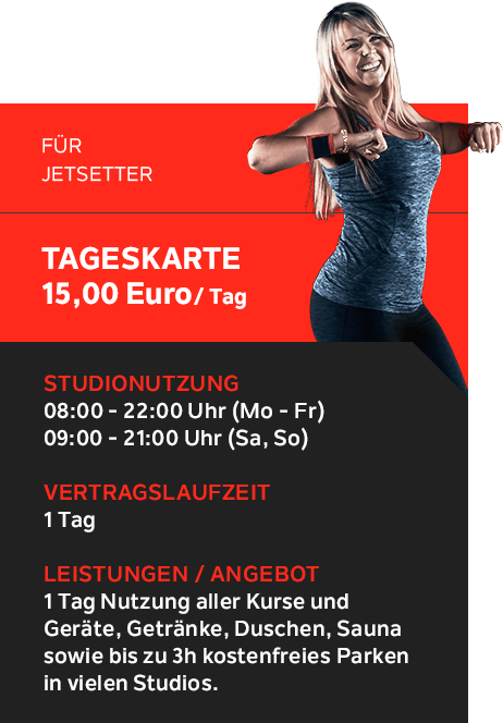 Superfit Tageskarte